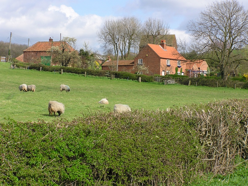 Little Gringley, Retford, Nottinghamshire